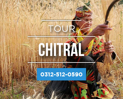 Chitral kalash Tour Packages