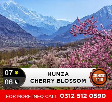 Hunza-Cherry-Blossom-Tour