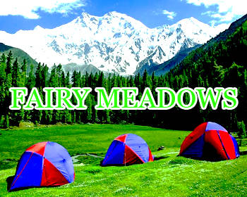 Fairymeadows-Tours-packages-plans