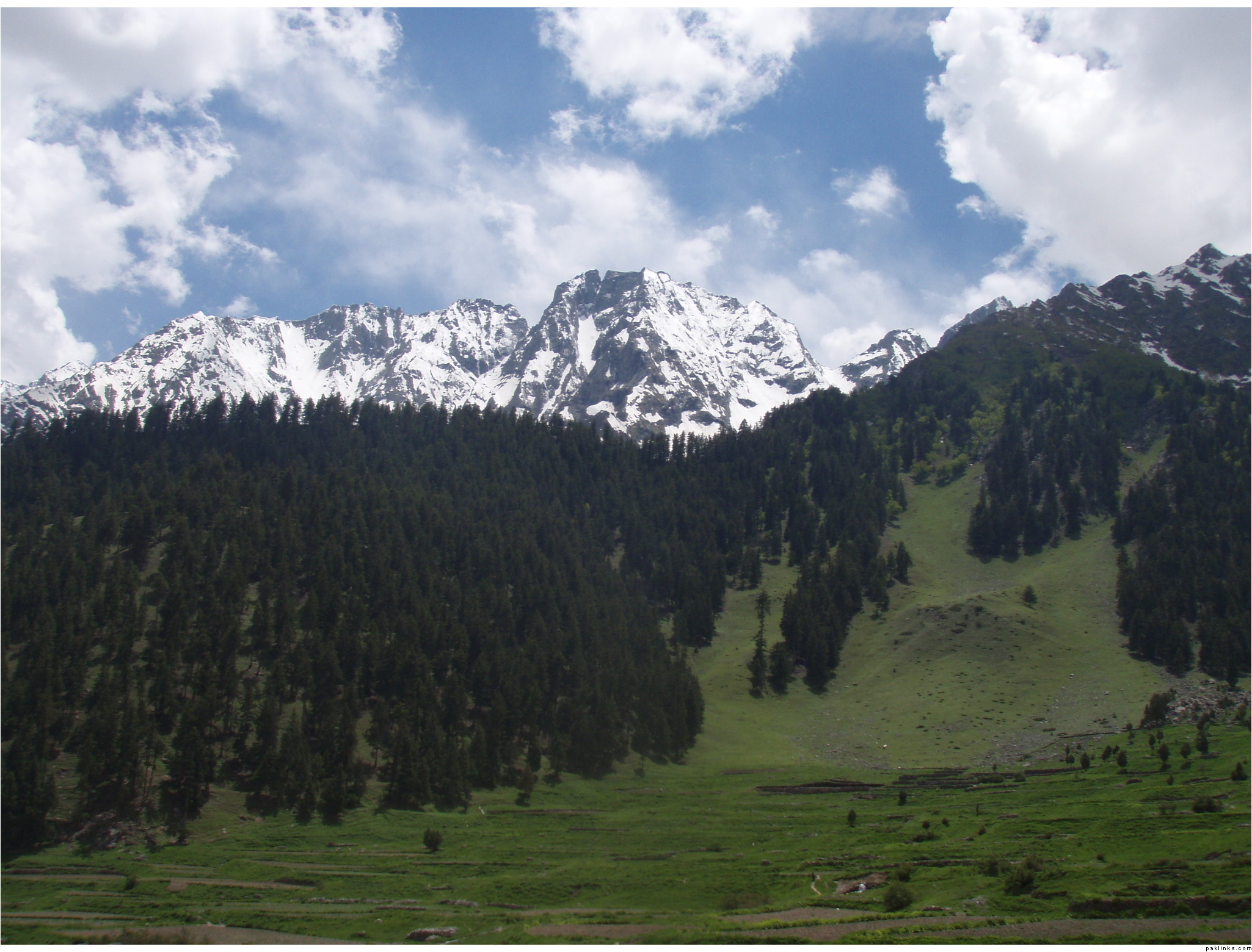 Valley of Naltar