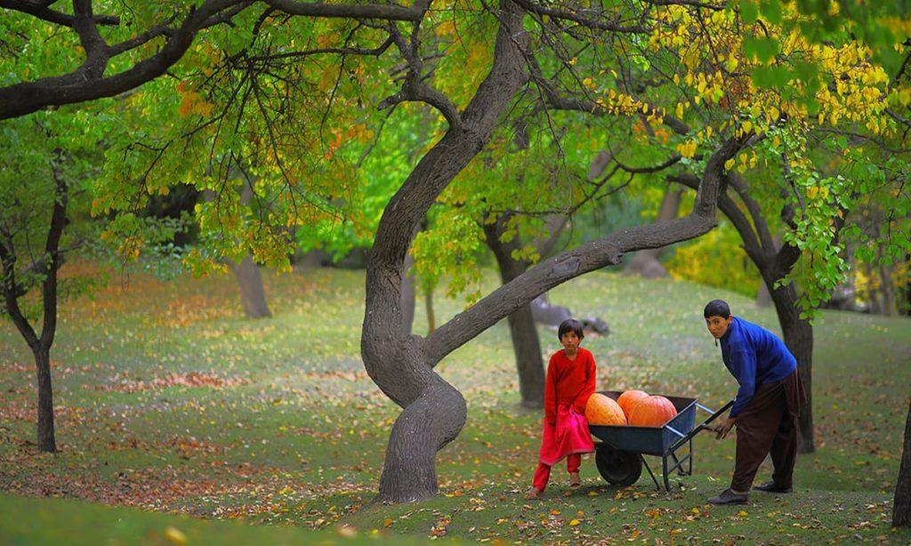 Royal Garden of Hunza Valley