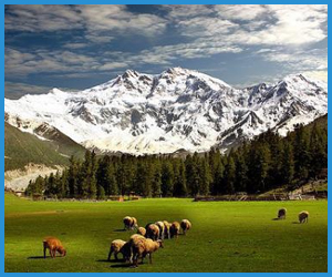 Honeymoon Hunza Tours Package
