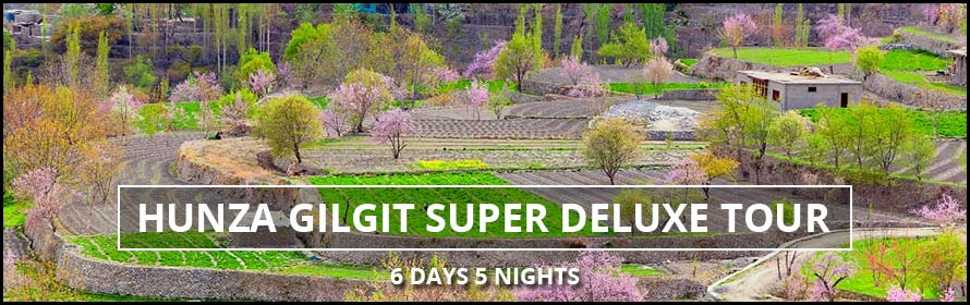 Hunza Naltar Valley Super Deluxe Tour Packages