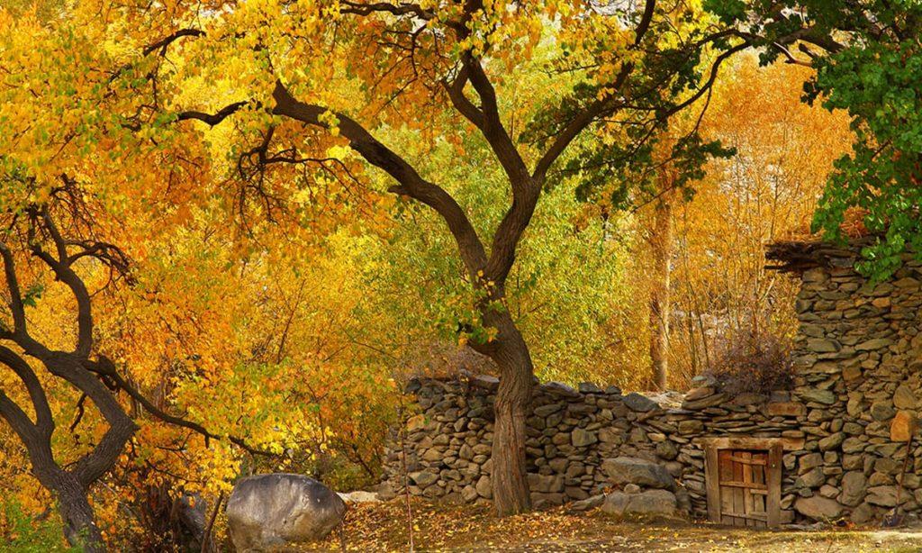 hunza-autumn-2016