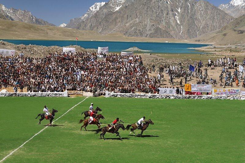 Horses in Polo Match Shandur Ground