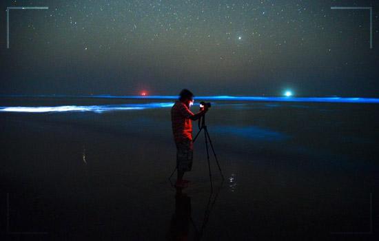 This Bioluminescent Beach in Pakistan Image 3