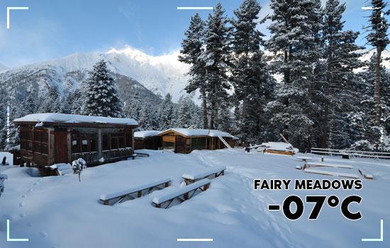 Fairy-Meadows