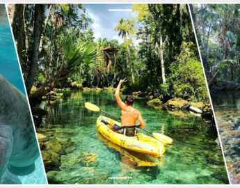 5-Top-Things-To-Do-In-Crystal-River-Florida-Banner