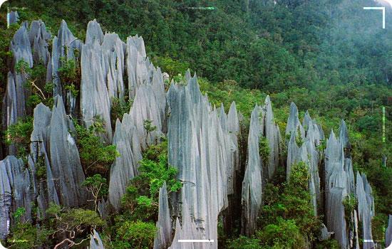 Gunung-Mulu-National-Park