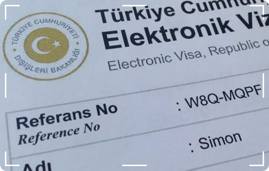 Does Turkey E VISA have any other information