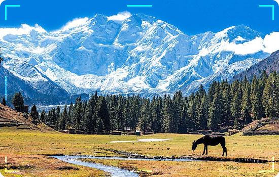 Fairy Meadows-Nanga-Parbat