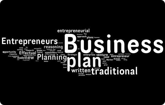 Entrepreneur plan: